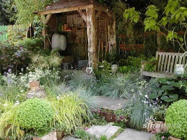 精致私家庭院小花园图片 室内装修绿色植物搭配效果图与实